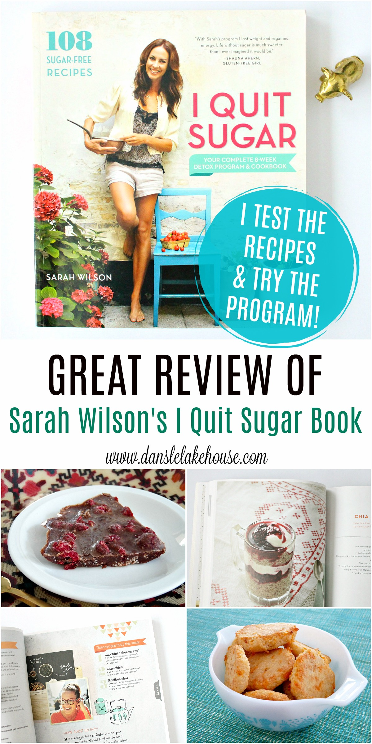 GREAT review of Sarah Wilson's I Quit Sugar Detox Program and Book. I try the program, share my results and test out some of the recipes. #quittingsugar #lowsugar #quitsugar #sarahwilson