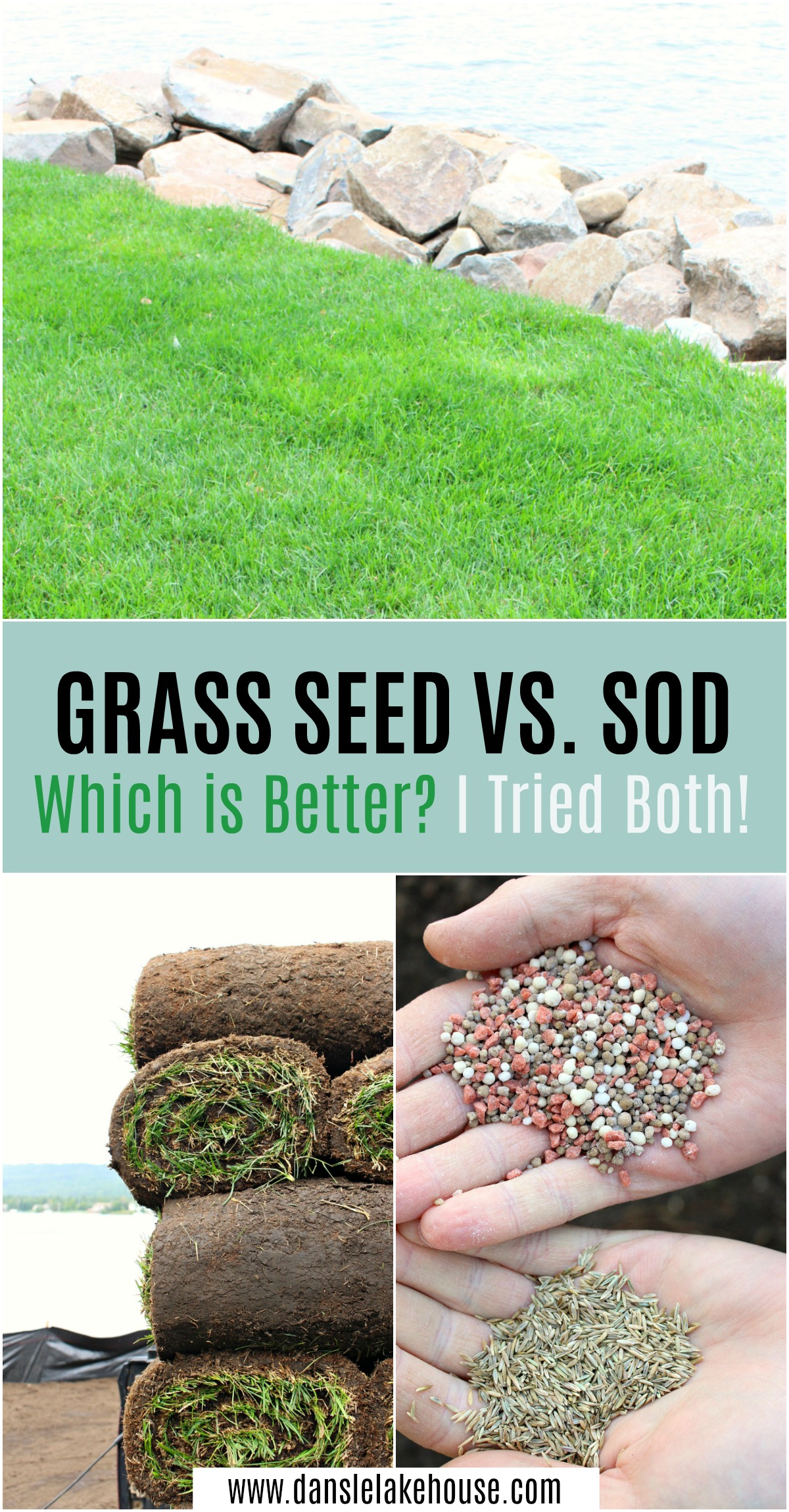 Grass Seed vs. Sod. Which is Better? I Tried Both and Show You How They Grew