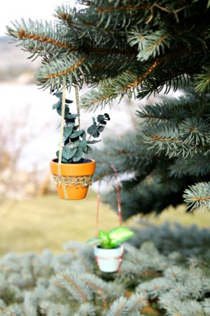 DIY MINI POTTED PLANT ORNAMENT