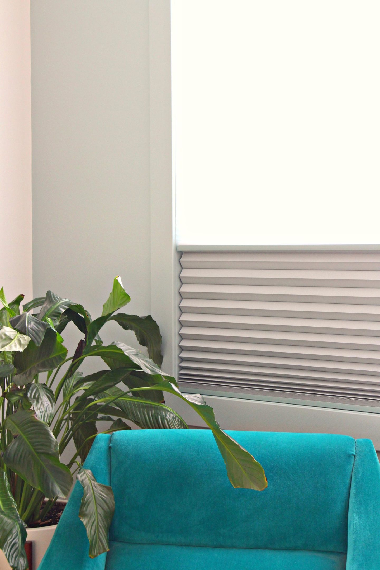Our Custom Window Shades vs Cheap Window Shades | Review + Shopping Process. PureVu Honeycomb Shades Slate