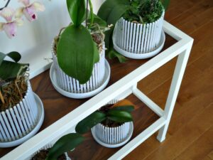 HACK FOR PLANT STAND WITH BROKEN GLASS