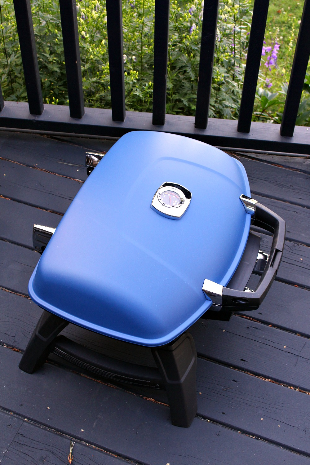 Napolean Portable Gas Grill