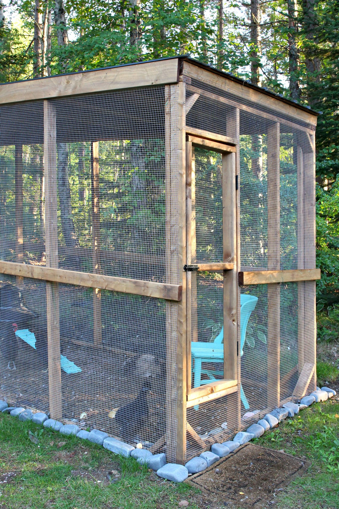 Predator Proof Chicken Run Design