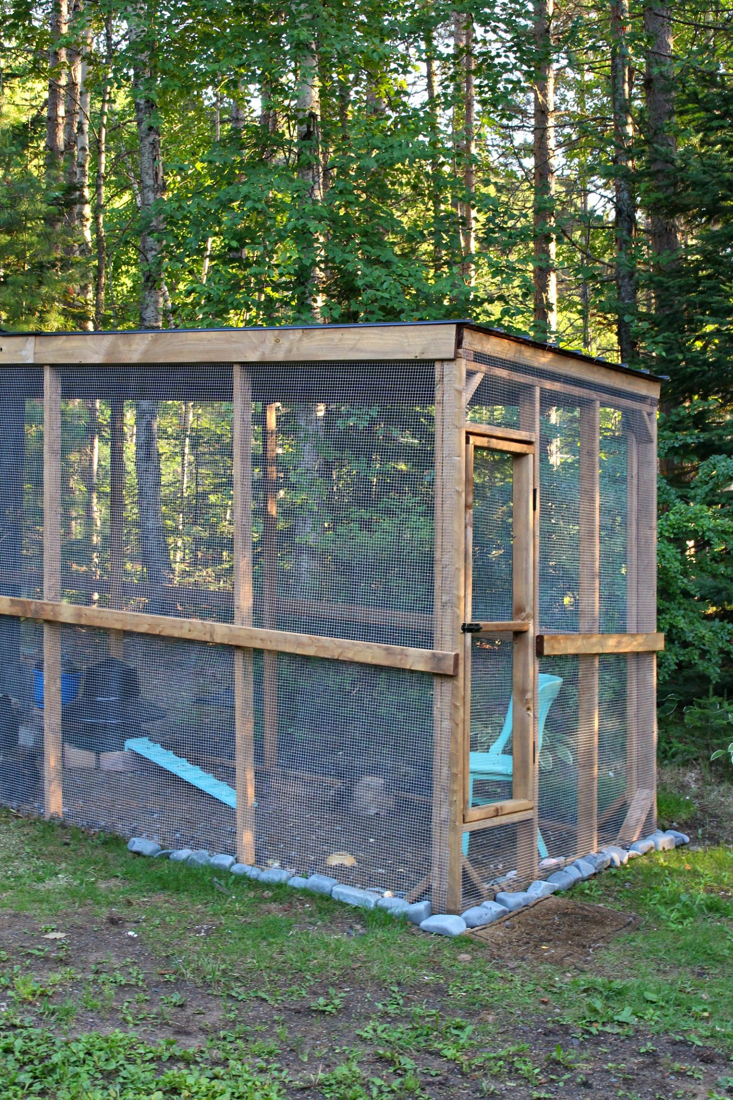 Sheltered Chicken Run DIY Tutorial