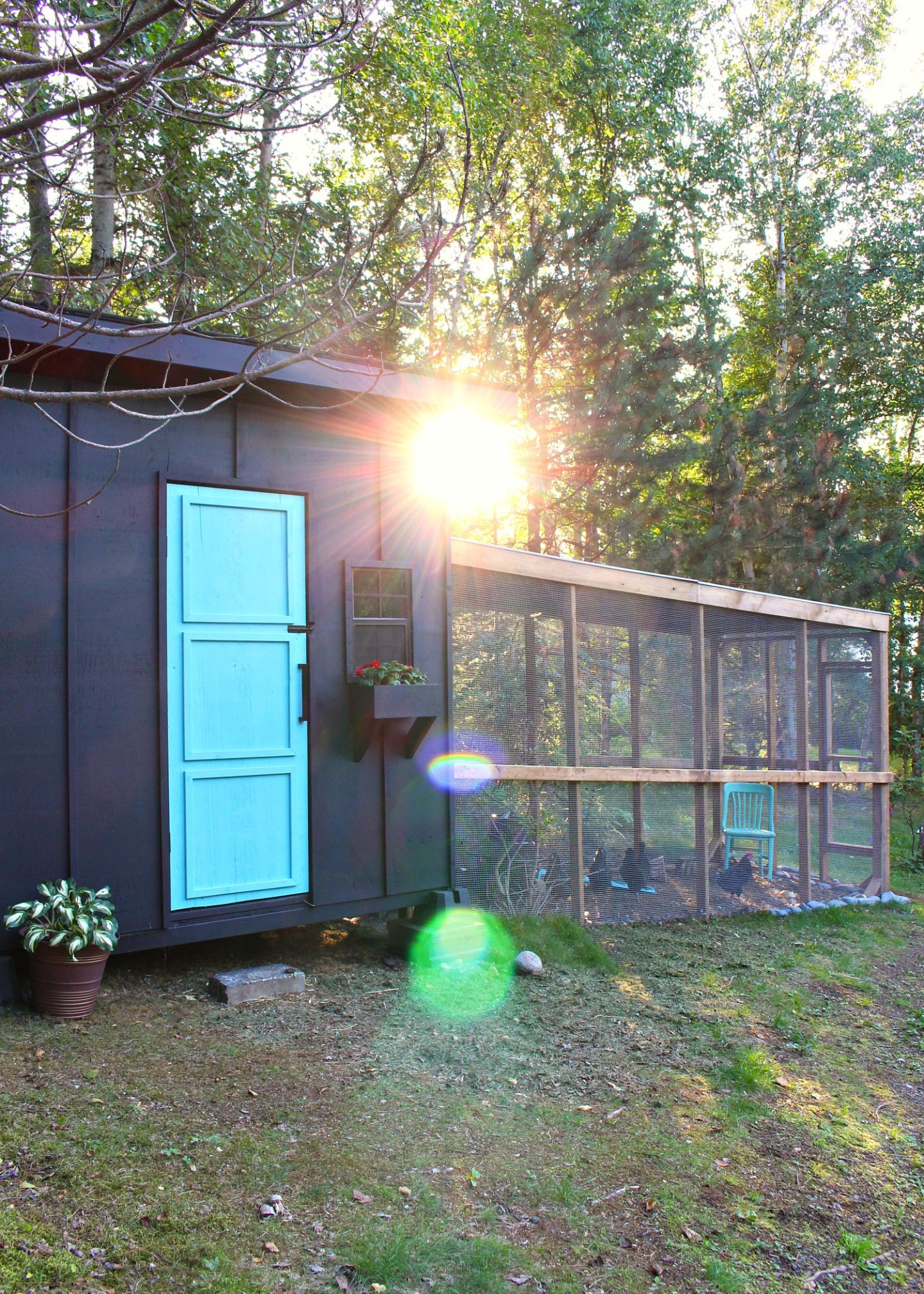 How to Build This Modern Chicken Coop and Run