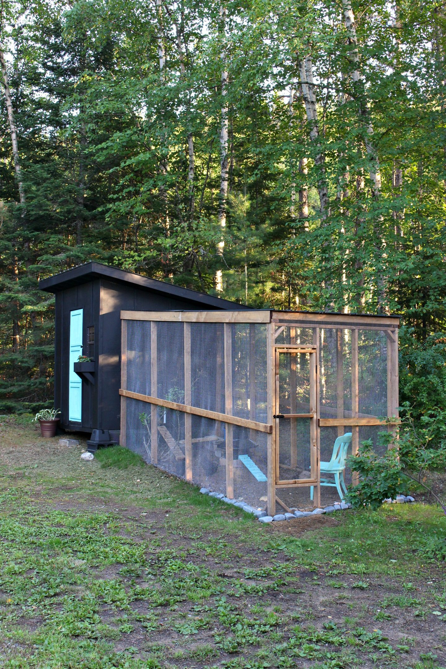 Modern DIY Chicken Coop with Attached Run Plans