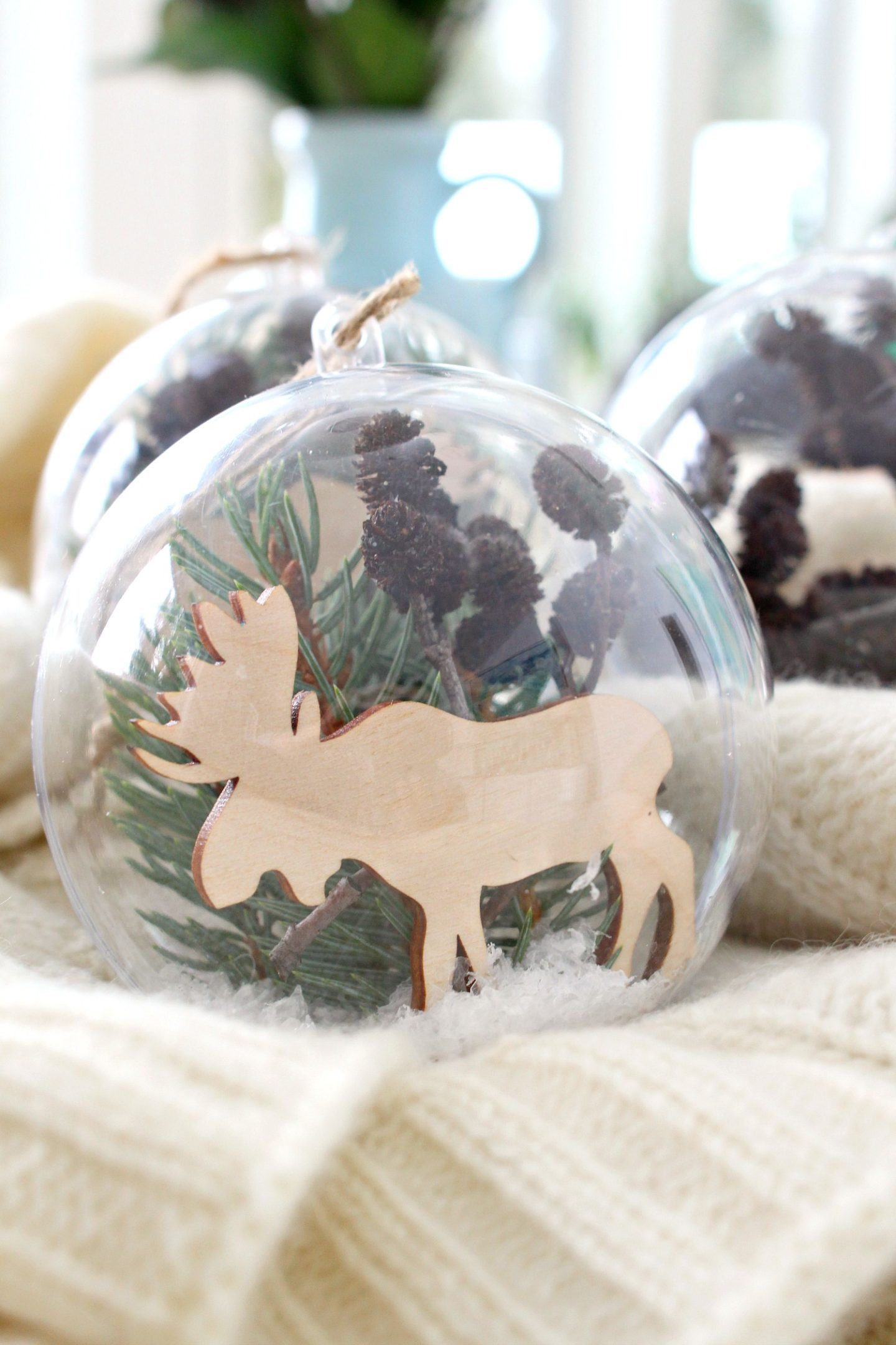 Nature Filled DIY Ornament