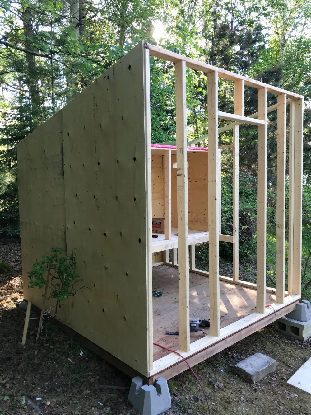 DIY Urban Chicken Coop Design