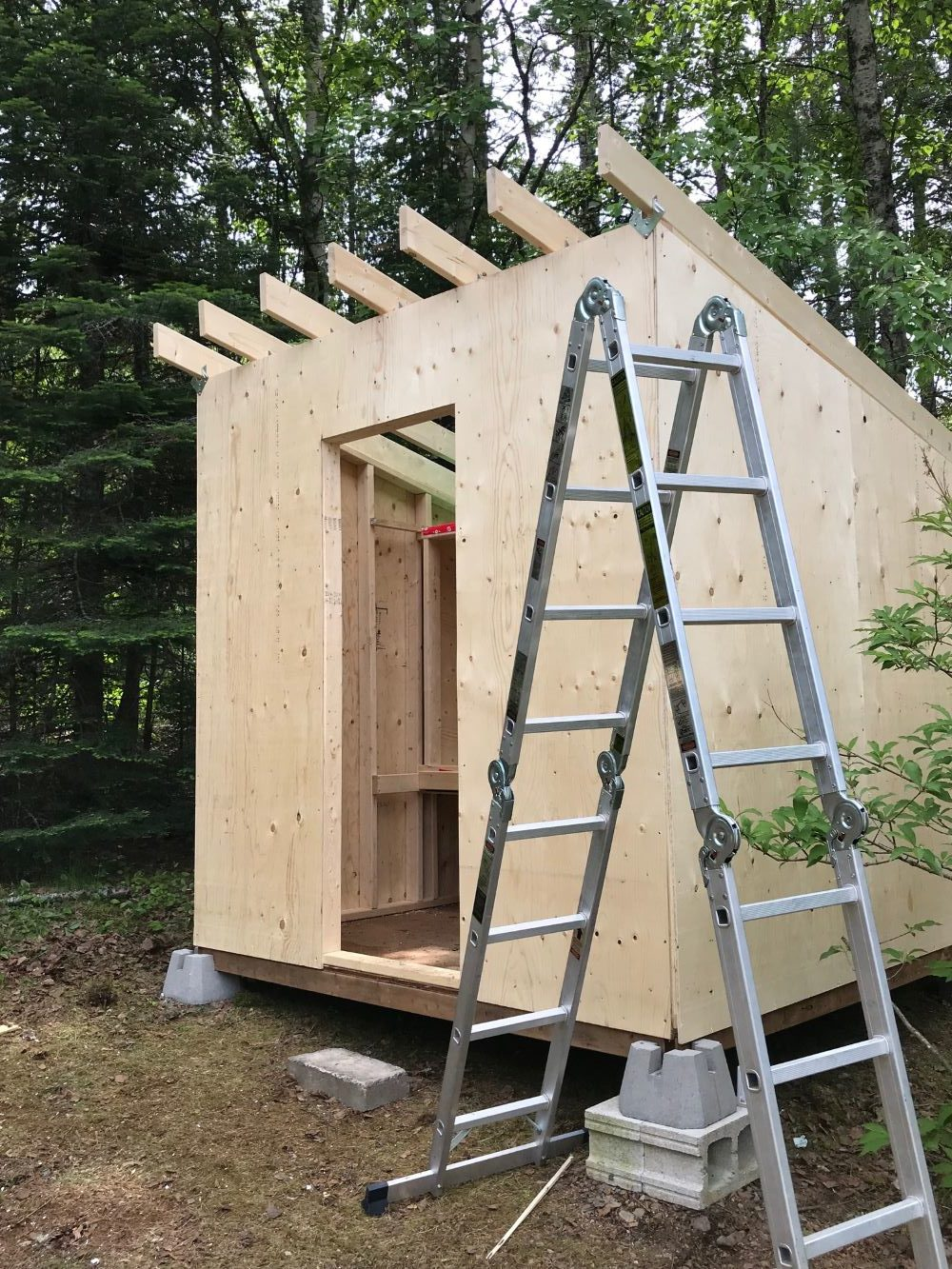 How to Build a Chicken Coop Step-by-Step