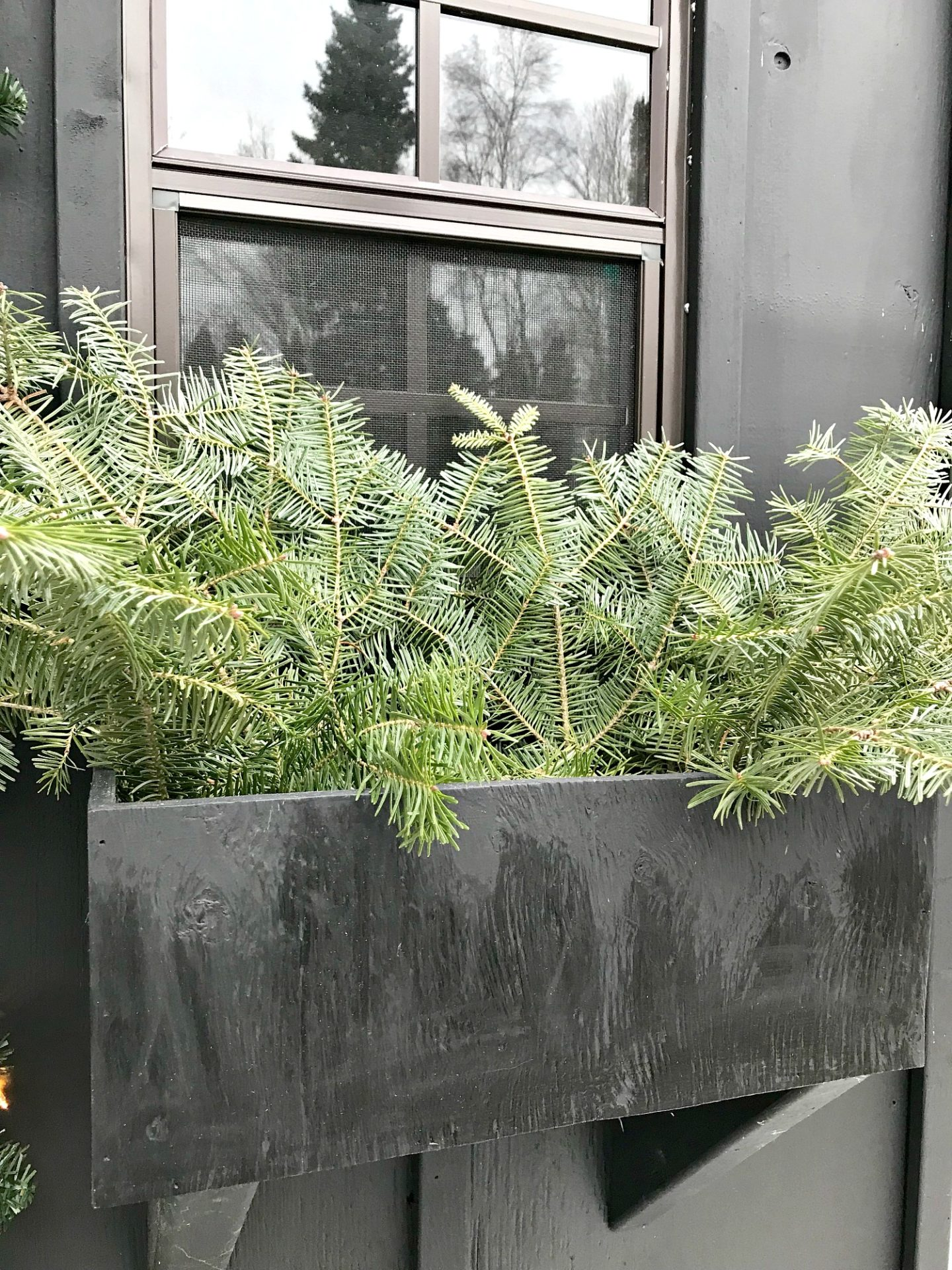 DIY Winter Window Box Evergreen - Progress Photo