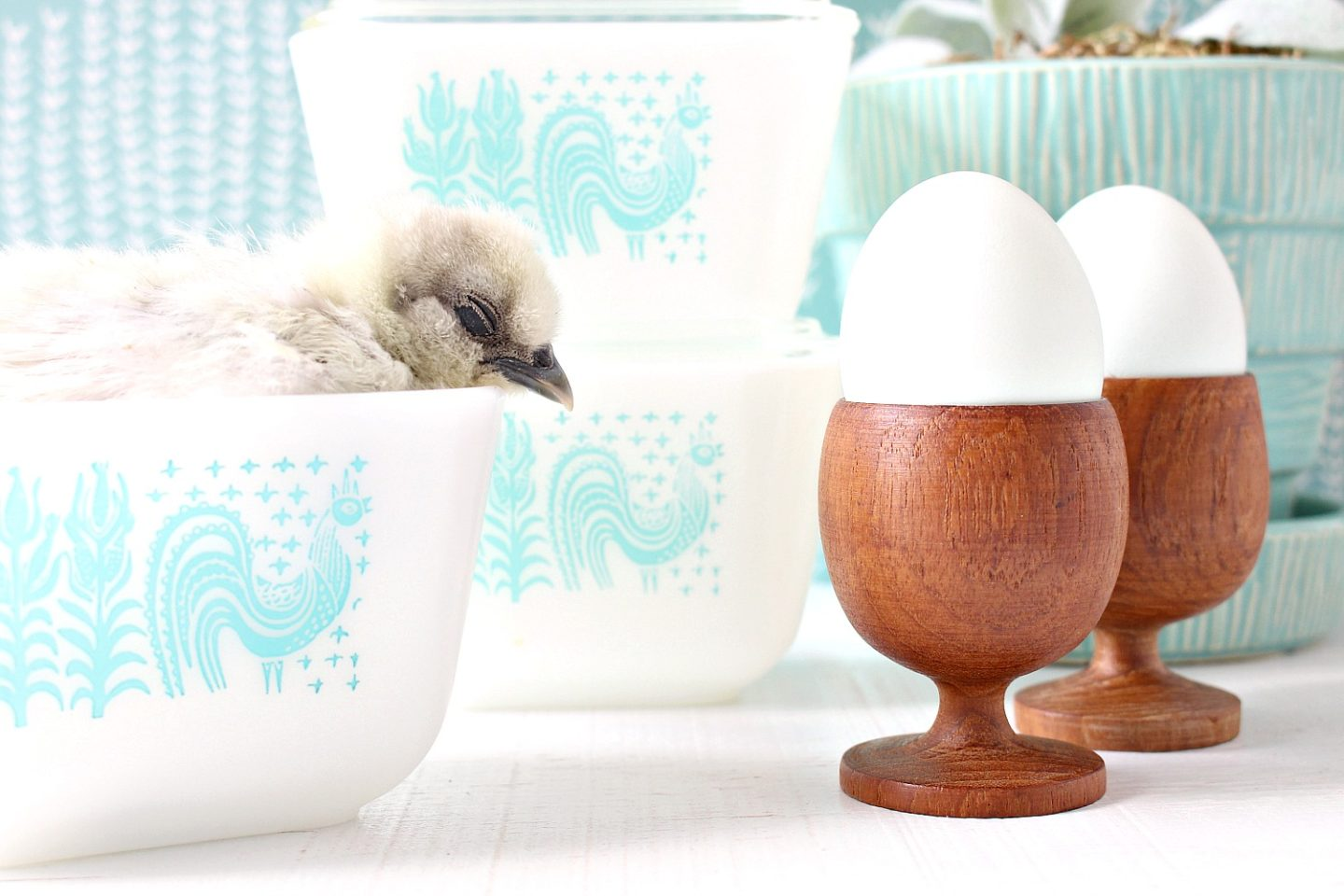 Spring Chicks and Vintage Butterprint Pyrex