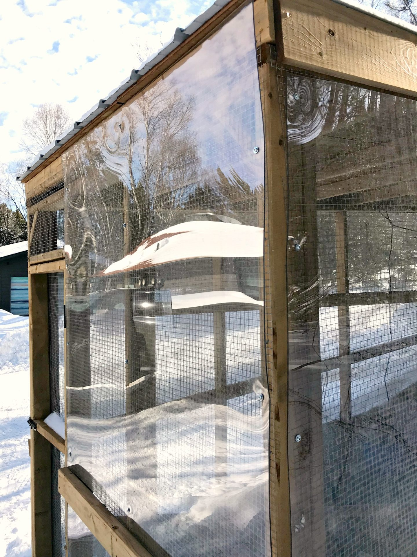 How We Keep Chickens Warm in Extreme Cold Winter Weather