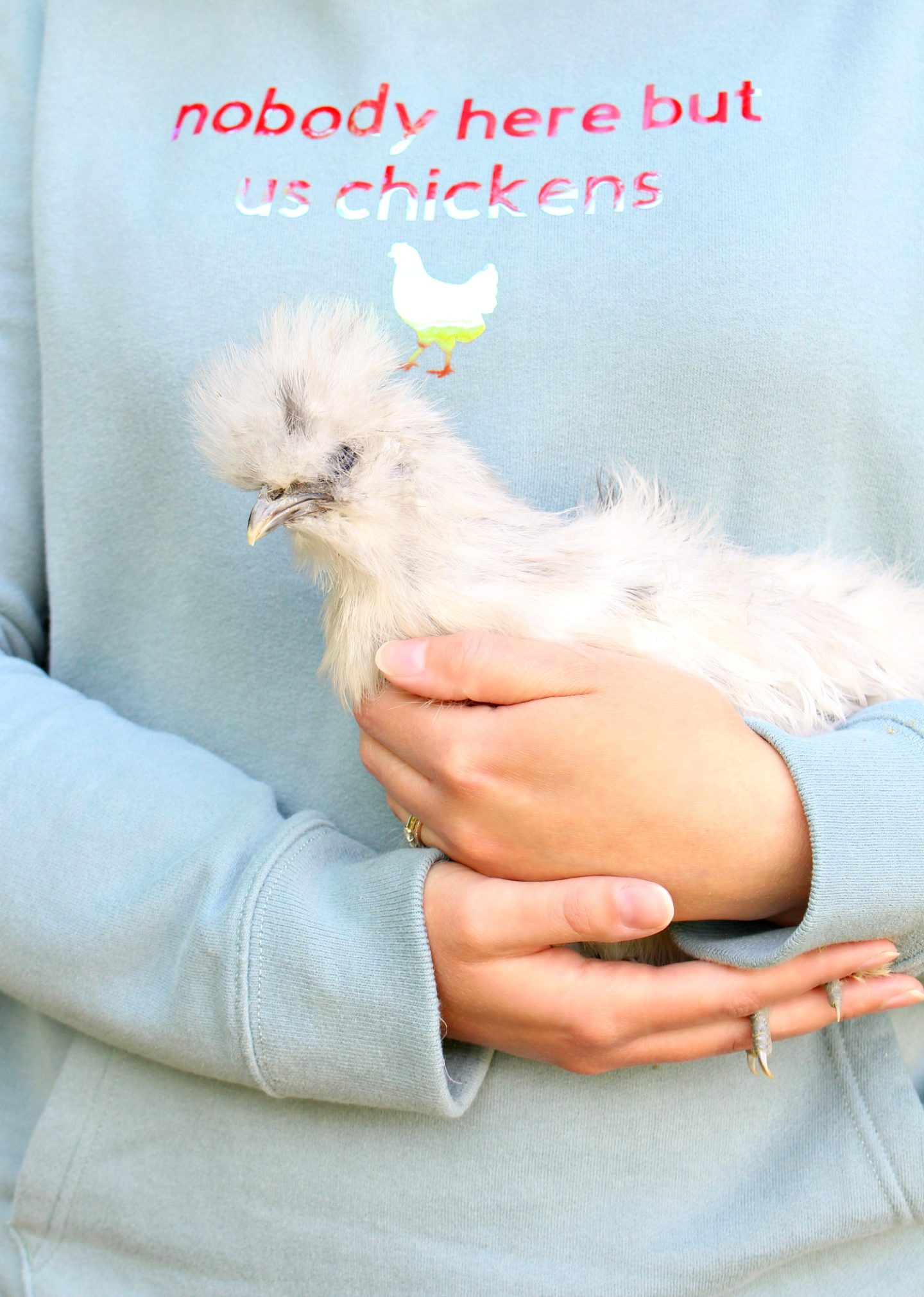 Crazy Chicken Lady DIY Gift Idea