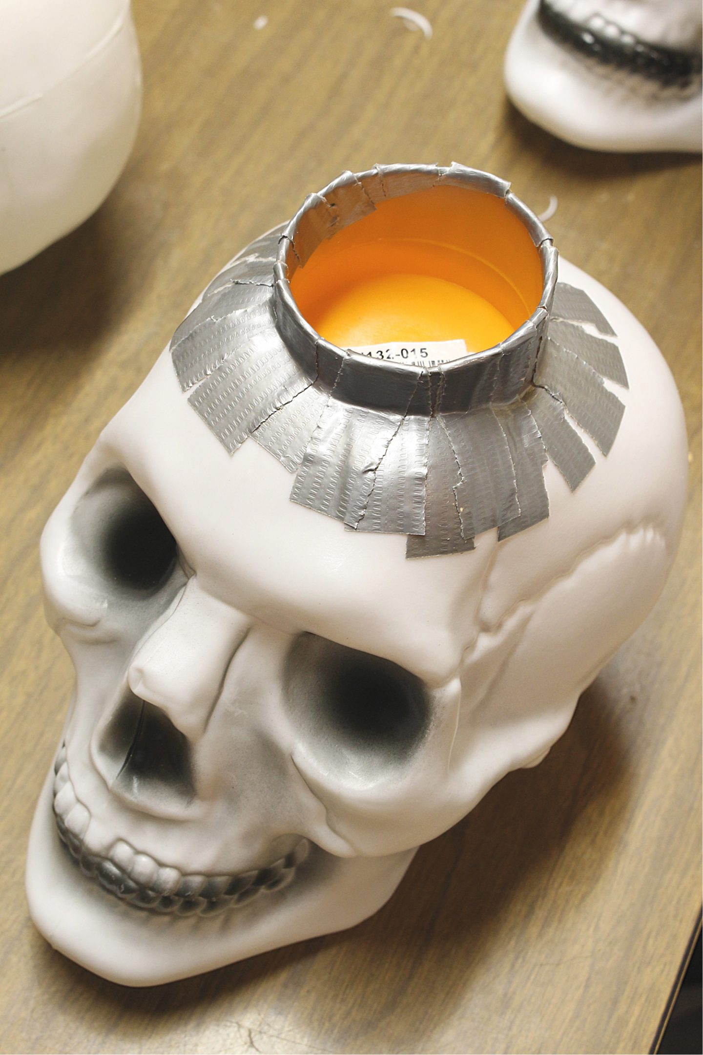 Make a Plastic Mould for Concrete Skull