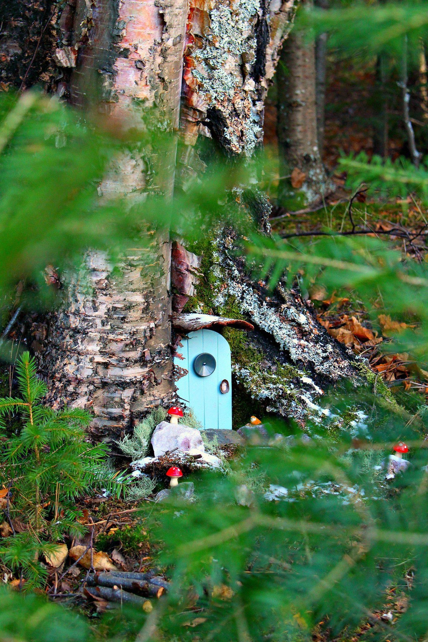 DIY Fairy Door in a Tree