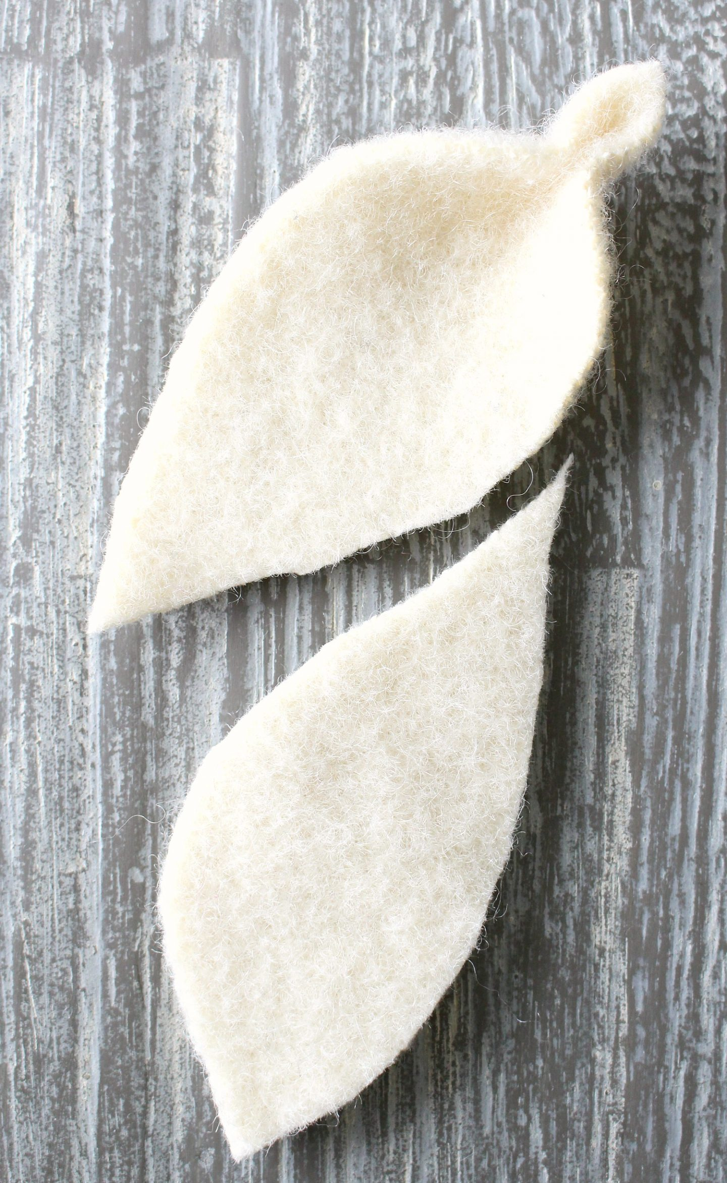 How to make a felted leaf diy