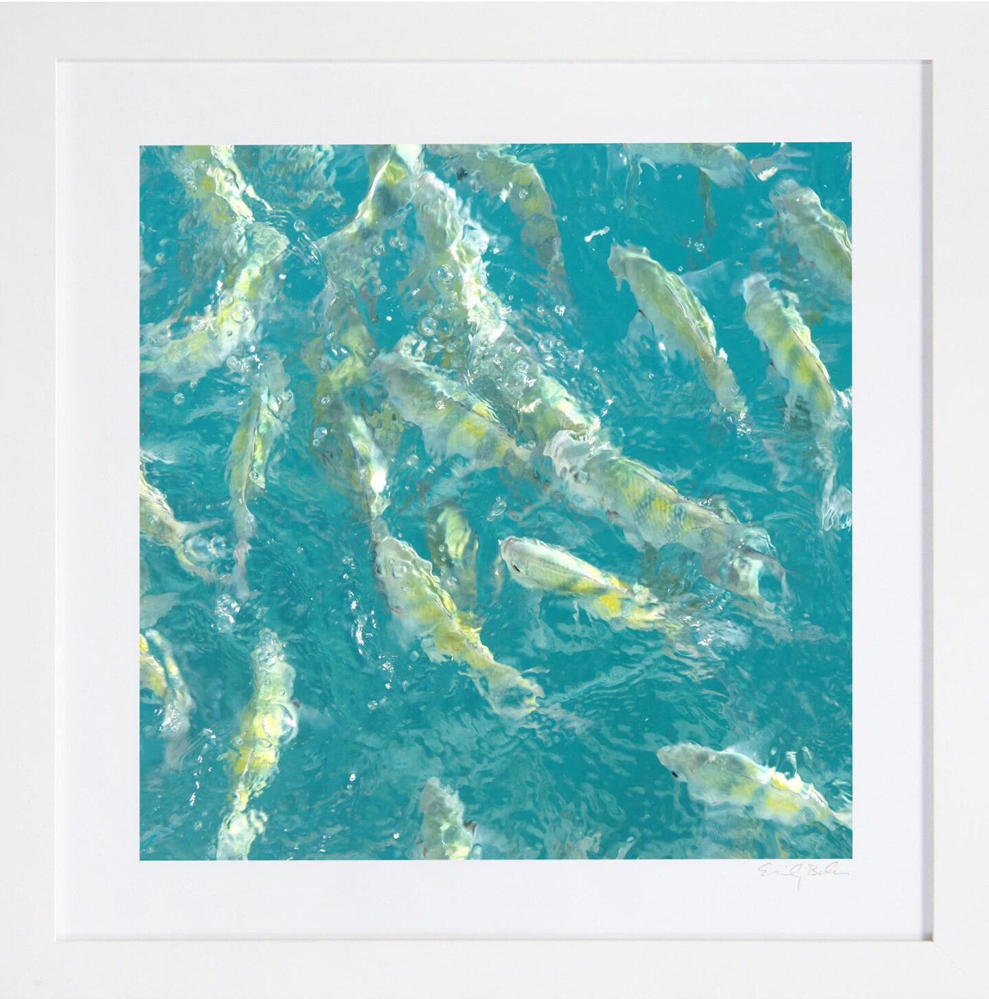 Art du poisson turquoise